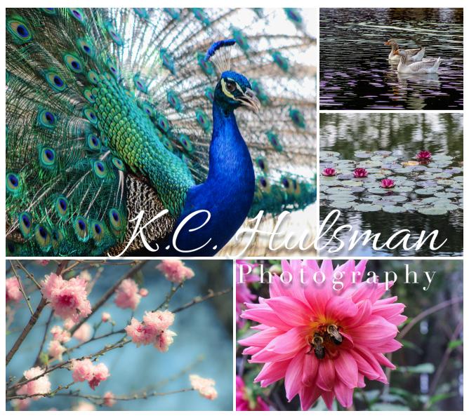 kchulsman_tower_gallery_grapevine.jpg