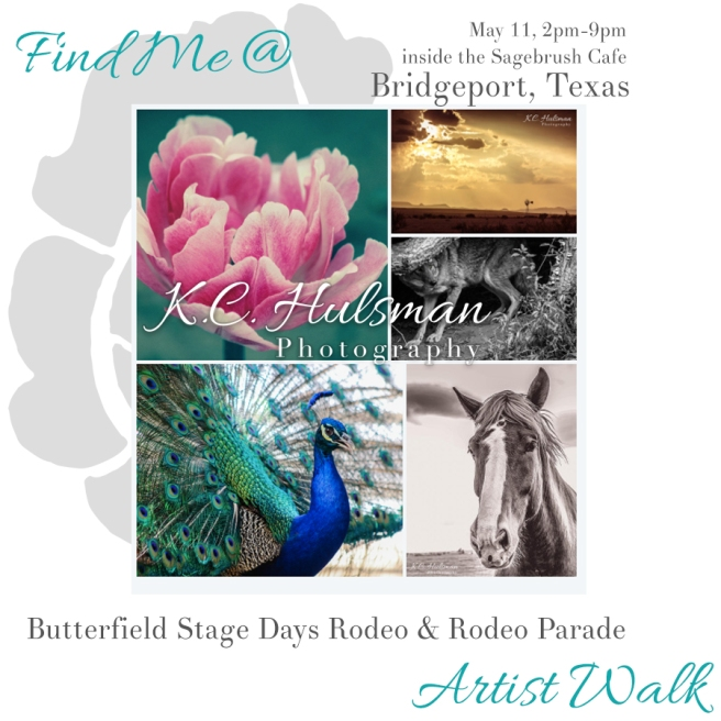 bridgeport_art_walk