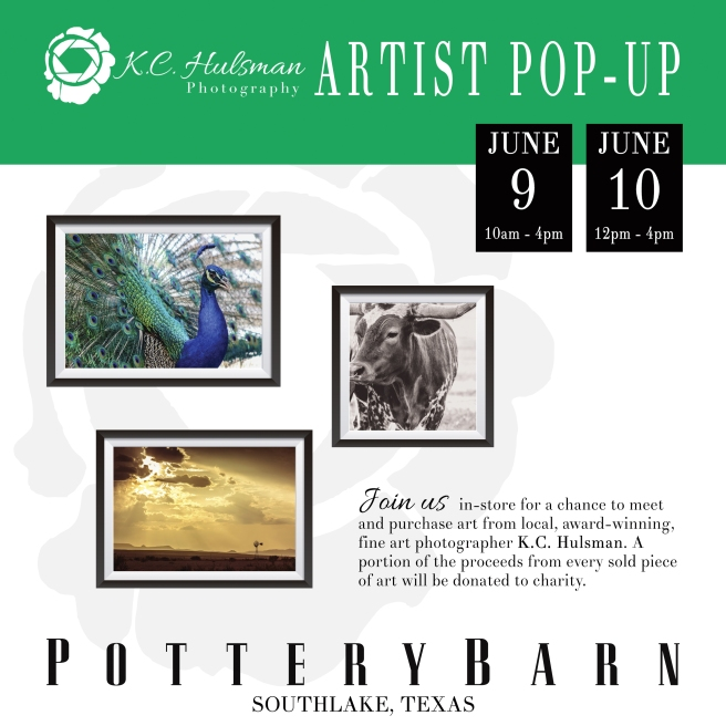 kchulsman_pottery_barn_social_media.jpg