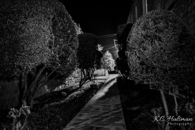 Walking After Midnight - Albany, Texas